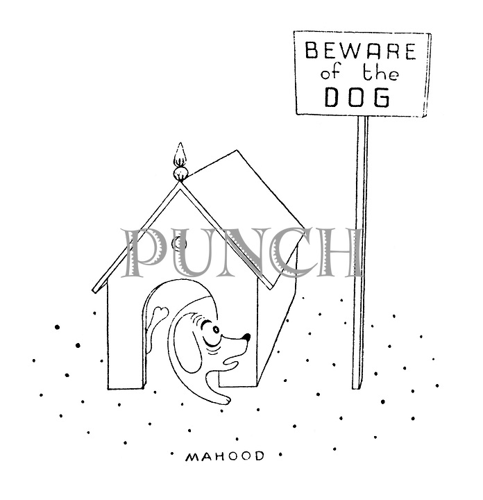 (A dog gets scared when it sees a beware of the dog sign unaware that it is the dog of which others should beware)