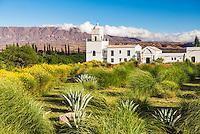 La Merced del Alto, Cachi Valley, Argentina