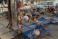 Auf dem Markt, in Saigon, Vietnam