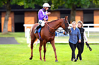 Winner of The British Stallion Studs EBF Conditions Stakes Foxtrot Lady ridden by Jason Watson and trained by Andrew Balding  is led into the winners enclosure during Twilight Racing at Salisbury Racecourse on 14th September 2018