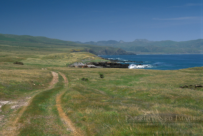 Rural road trail through green grass coastal hills in spring, Santa Cruz Island, Channel Islands, California