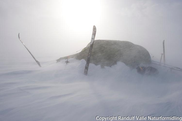 Telt i snøstorm. ---- Tent in snow storm.