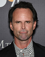 "30 July 2019 - Los Angeles, California - Walton Goggins. ""Them That Follow"" Los Angeles Premiere held at the Landmark Theatre. Photo Credit: Billy Bennight/AdMedia"