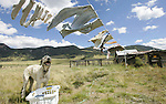 "Writer Pam Houston's laundry dries in the wind at her ranch in Creede, Co. on Friday Sept. 14, 2007.   She's written four books, including ""Cowboys are my Weekness,"" and teaches creative writing.  (ELLEN JASKOL/ROCKY MOUNTAIN NEWS)"