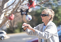 NWA Democrat-Gazette/FLIP PUTTHOFF <br />EXTERIOR DECORATOR<br />Virginia Hiett of Rogers places Christmas decorations on trees Saturday Nov. 30 2019 at the Rogers Public Library. Hiett decorated two red maple trees on the north side of the library.