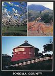 FB 181  Sonoma County, CA.  3 image 5x7 postcard