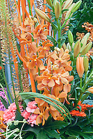Orange Orchid Flower Arrangement