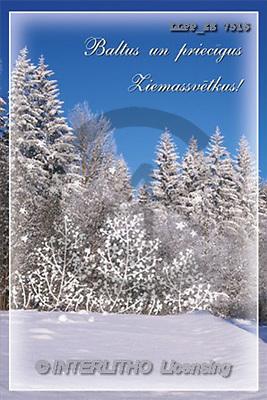 Maira, CHRISTMAS LANDSCAPE, photos(LLPPZS7516,#XL#) Landschaften, Weihnachten, paisajes, Navidad
