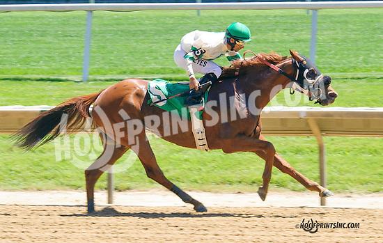 Pro Prospect winning at Delaware Park on 5/23/15