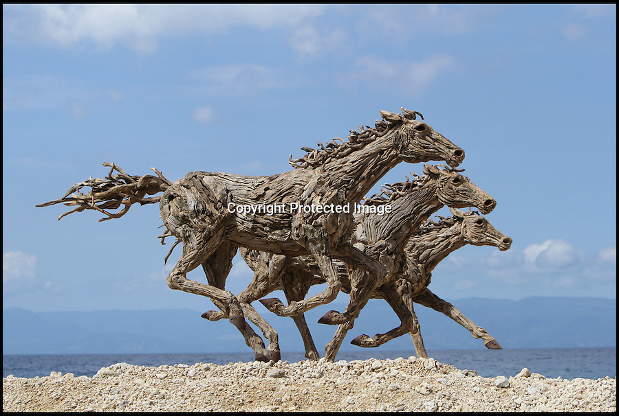 BNPS.co.uk (01202 558833)<br /> Pic: JamesDoran-Webb/BNPS<br /> <br /> ****Please use full byline****<br /> <br /> Three horses galloping along the seafront in Cebu, Philippines.<br /> <br /> These majestic horses galloping along a white sand beach may look real - but in fact they're made from thousands of pieces of driftwood salvaged from beach.<br /> <br /> The life-size sculptures are the work of British master craftsman James Doran-Webb and took a painstaking six months to assemble.<br /> <br /> They stand at around 6ft tall - or 16 hands in horse terms - and each is made from 400 pieces of driftwood of varying sizes built around a stainless steel skeleton.<br /> <br /> They weigh half a tonne each once complete and can take the weight of five people.<br /> <br /> James cleverly makes them with moveable limbs so they can be arranged into lifelike poses.<br /> <br /> The intricate trio of horses were constructed for the Gardens by the Bay in Singapore, a nature park similar to Cornwall's Eden project.