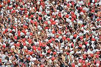 SÃO PAULO, SP, 14.09.2014 - CAMPEONATO BRASILEIRO - SÃO PAULO x CRUZEIRO - Torcida do São Paulo durante partida São Paulo x Cruzeiro, jogo valido pela 21ª rodada do Campeonato Brasileiro de 2014, no estadio do Morumbi, regiao sul de São Paulo. (Foto: Levi Bianco / Brazil Photo Press)