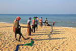 Traditional fishing hauling nets Nilavelli beach , near Trincomalee, Eastern province, Sri Lanka, Asia