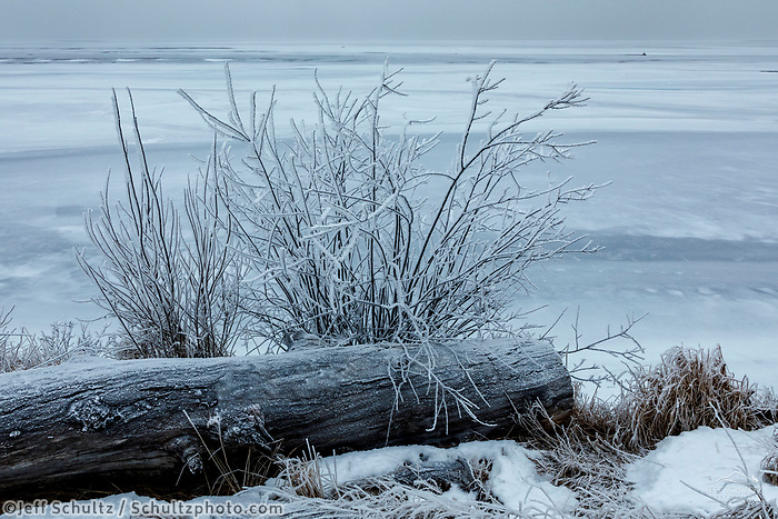 Winter landscape of frost covered shrubs along the frozen Knik River ice in the Matanuska Valley near Palmer, Alaska.  Southcentral Alaska<br /> <br /> Photo by Jeff Schultz/SchultzPhoto.com  (C) 2019  ALL RIGHTS RESERVED