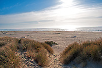 Late summer sun sets at Ziolkouski Beach Park and the Oregon Dunes National Recreational Area.