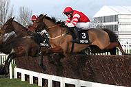 Cheltenham Trials 2014