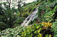 Botanical Gardens, Ocho Rios, Jamaica