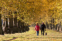 2014_10_19_clumber_autumn