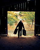 USA, California, Gold Country vineyard manager carrying wooden wine boxes out of a barn at Sabon Estate Winery, Plymouth