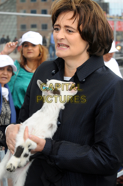 Cherie Blair.International Widows' Day Celebrity Goat Walk at London Bridge, London, England, UK, June 23rd 2012..half length holding baby goat animal black trench coat Booth .CAP/BK/PP.©Bob Kent/PP/Capital Pictures.