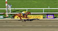 OCEANPORT, NJ - JULY 29: Good Magic, #6, ridden by Jose Ortiz, wins the Haskell Invitational Stakes on Haskell Invitational Day at Monmouth Park Race Course on July 29, 2018 in Oceanport, New Jersey. (Photo by Sydney Serio/Eclipse Sportswire/Getty Images)