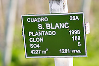 A sign in the vineyard showing that this plot is planted with Sauvignon Blanc. Vinedos y Bodega Filgueira Winery, Cuchilla Verde, Canelones, Montevideo, Uruguay, South America