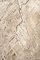 Close-up of iron meteorite, showing Widmanstatten pattern of nickel-iron crystallization. Found in Collin County, Texas, USA, circa 1870s.