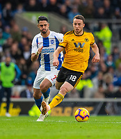 Wolverhampton Wanderers' Diogo Jota (right) under pressure from Brighton &amp; Hove Albion's Beram Kayal (left) <br /> <br /> Photographer David Horton/CameraSport<br /> <br /> The Premier League - Brighton and Hove Albion v Wolverhampton Wanderers - Saturday 27th October 2018 - The Amex Stadium - Brighton<br /> <br /> World Copyright &copy; 2018 CameraSport. All rights reserved. 43 Linden Ave. Countesthorpe. Leicester. England. LE8 5PG - Tel: +44 (0) 116 277 4147 - admin@camerasport.com - www.camerasport.com