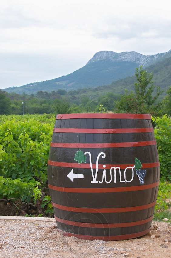 Big barrel standing in the vineyard with writing painted in white saying Vino, grape bunch and arrow, mountains in background. Matusko Winery. Potmje village, Dingac wine region, Peljesac peninsula. Matusko Winery. Dingac village and region. Peljesac peninsula. Dalmatian Coast, Croatia, Europe.
