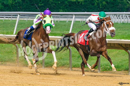 Fabled winning at Delaware Park on 8/3/16
