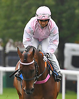 Bounty Pursuit ridden by Marco Ghiani goes down to the start  of The Shadwell Racing Excellence Apprentice Handicap Div 2   during Horse Racing at Salisbury Racecourse on 14th August 2019