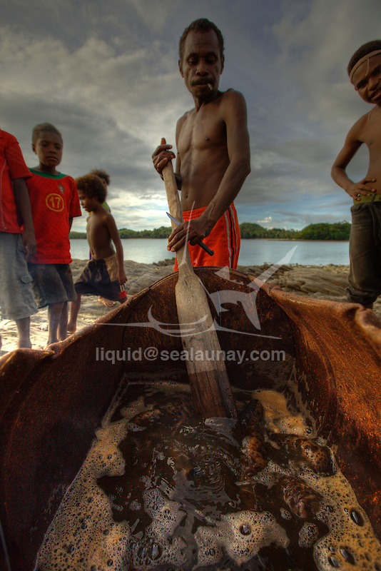 Local man boiling sea cucumbers after collecting them at sea in the village of Hessessai Bay at PanaTinai (Panatinane)island in the Louisiade Archipelago in Milne Bay Province, Papua New Guinea.  The island has an area of 78 km2..The Louisiade Archipelago is a string of ten larger volcanic islands frequently fringed by coral reefs, and 90 smaller coral islands located 200 km southeast of New Guinea, stretching over more than 160 km and spread over an ocean area of 26,000 km? between the Solomon Sea to the north and the Coral Sea to the south. The aggregate land area of the islands is about 1,790 km? (690 square miles), with Vanatinai (formerly Sudest or Tagula as named by European claimants on Western maps) being the largest..Sideia Island and Basilaki Island lie closest to New Guinea, while Misima, Vanatinai, and Rossel islands lie further east..The archipelago is divided into the Local Level Government (LLG) areas Louisiade Rural (western part, with Misima), and Yaleyamba (western part, with Rossell and Tagula islands. The LLG areas are part of Samarai-Murua District district of Milne Bay. The seat of the Louisiade Rural LLG is Bwagaoia on Misima Island, the population center of the archipelago.PanaTinai (Panatinane) is an island in the Louisiade Archipelago in Milne Bay Province, Papua New Guinea. The island has an area of 78 km2..The Louisiade Archipelago is a string of ten larger volcanic islands frequently fringed by coral reefs, and 90 smaller coral islands located 200 km southeast of New Guinea, stretching over more than 160 km and spread over an ocean area of 26,000 km? between the Solomon Sea to the north and the Coral Sea to the south. The aggregate land area of the islands is about 1,790 km? (690 square miles), with Vanatinai (formerly Sudest or Tagula as named by European claimants on Western maps) being the largest..Sideia Island and Basilaki Island lie closest to New Guinea, while Misima, Vanatinai, and Rossel islands lie further east..The archipelago