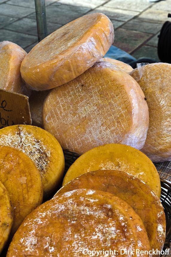 Korsischer Käse auf dem Markt auf der Place Foch in Ajaccio, Korsika, Frankreich