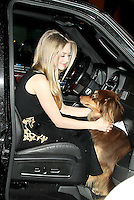 NEW YORK, NY - DECEMBER 11: Amanda Seyfried and her dog Finn at Late Show with David Letterman in New York City. December 11, 2012. Credit:RW/MediaPunch Inc. /NortePhoto
