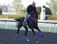 Howe Great goes to Keeneland's main track in preparation for tomorrow's running of the Bluegrass Stakes.  April 13, 2012.