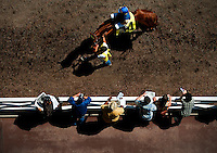A horse is lead to the track on Santa Anita Derby derby day at Santa Anita Park in Arcadia California on April 7, 2012.