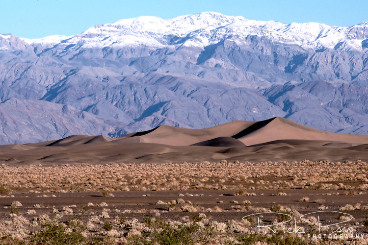 Tucked into Mesquite Flat, just a few miles from Stovepipe Wells and surrounded by mountains on all sides, are Death Valley's most accessible sand dunes. Formed from the tiny grains of quartz and feldspar , which likely eroded by the wind from the Cottonwood Mountains to the north and northwest, the dune field began as much larger pieces of solid rock.