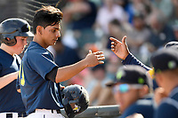 Shortstop Andres Gimenez (13) of the Columbia Fireflies is greeted after scoring a run in a game against the Rome Braves on Sunday, July 2, 2017, at Spirit Communications Park in Columbia, South Carolina. Columbia won, 3-2. (Tom Priddy/Four Seam Images)