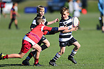 NELSON, NEW ZEALAND - AUGUST 31 Junior Rugby Mike's 7's  on August 31 at Green Meadows Stoke 2019 in Nelson, New Zealand. (Photo by: Evan Barnes Shuttersport Limited)