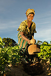 A woman works in her farm field near Kangawa, in northern Malawi.