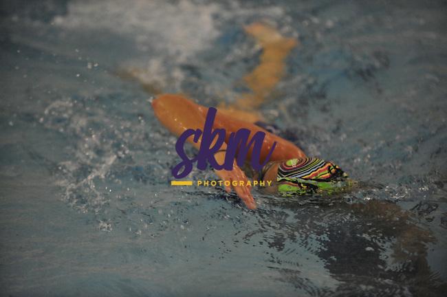 Stevenson swim team practice at McDonogh
