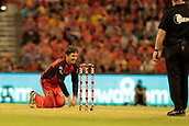 8th January 2018, The WACA, Perth, Australia; Australian Big Bash Cricket, Perth Scorchers versus Melbourne Renegades; Brad Hogg of the Melbourne Renegades begs for a wicket during his spell