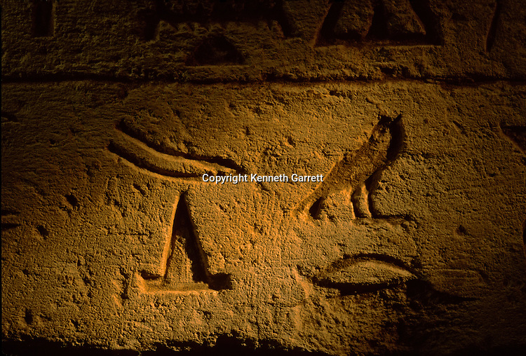 Old Kingdom, Egypt, Tomb, Overseer of the Workers, Pyramid, Archaeology, Rock Cut, Giza, Archaeologist