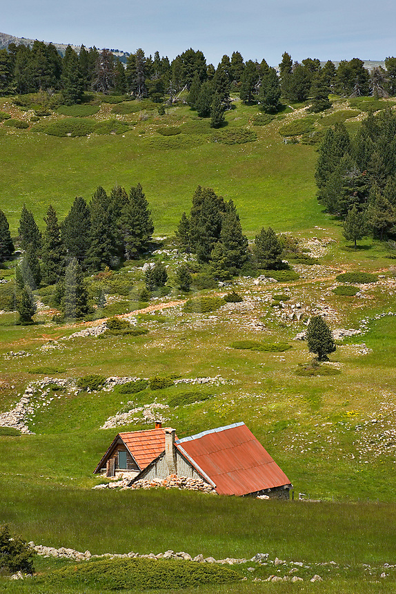 France. Drome. Diois. Tussac. Shepherds' summer shelters and plateau meadow land used for transhumance.  Plateau de Vercors.