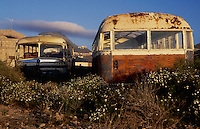 Coaches dumped and stripped and abandoned. Cabo blanco, Tenerife, 1994
