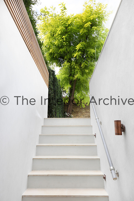 An exterior basement staircase frames the towering green walnut tree in the garden