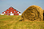 Red barn; white trim and doors, with quarters in the hay mow (pronounced: mao; same meaning as loft); hay rolls at the Sawyer homestead along the Loup River of central Nebraska.