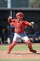 Los Angeles Angels catcher Cam Moye (16) during an Instructional League game against the Milwaukee Brewers on October 11, 2013 at Tempe Diablo Stadium Complex in Tempe, Arizona.  (Mike Janes/Four Seam Images)
