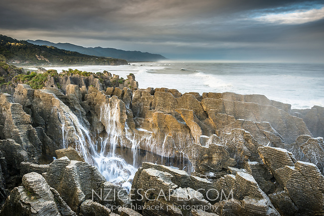 Blowhole at Pancake Rocks, limestone formations in Punakaiki in morning, Paparoa National Park, Buller Region, West Coast, New Zealand, NZ