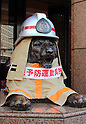 March 2, 2016, Tokyo, Japan - A bronze made lion statue, famous mascot of Japan's largest department store chain Mitsukoshi wears a helmet and a fire-proof firefighter's uniform at the company's Ginza store in Tokyo on Wednesday, March 2, 2016. The lion in firefighter's uniform is displayed for the campaign of a fire prevention week with Kyobashi fire station, from March 1 to 7.  (Photo by Yoshio Tsunoda/AFLO) LWX -ytd-