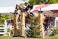 NZL-Jesse Campbell (KAAPACHINO) FINAL-33RD: SHOWJUMPING: 2016 GBR-Mitsubishi Motors Badminton Horse Trials CCI4* (Sunday 8 May) CREDIT: Libby Law COPYRIGHT: LIBBY LAW PHOTOGRAPHY